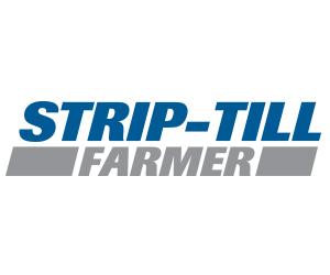 Logo: STF
